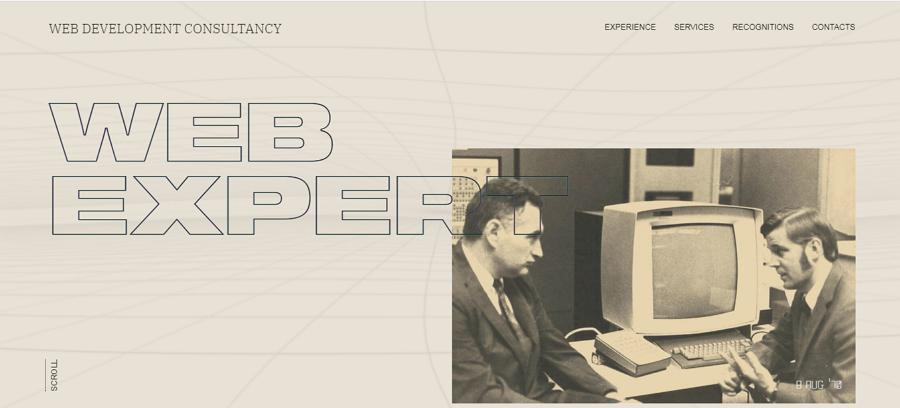 Web Expert