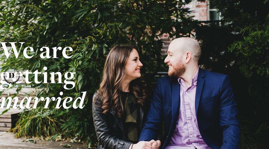 Take the High Brown Good Wedding Website Example