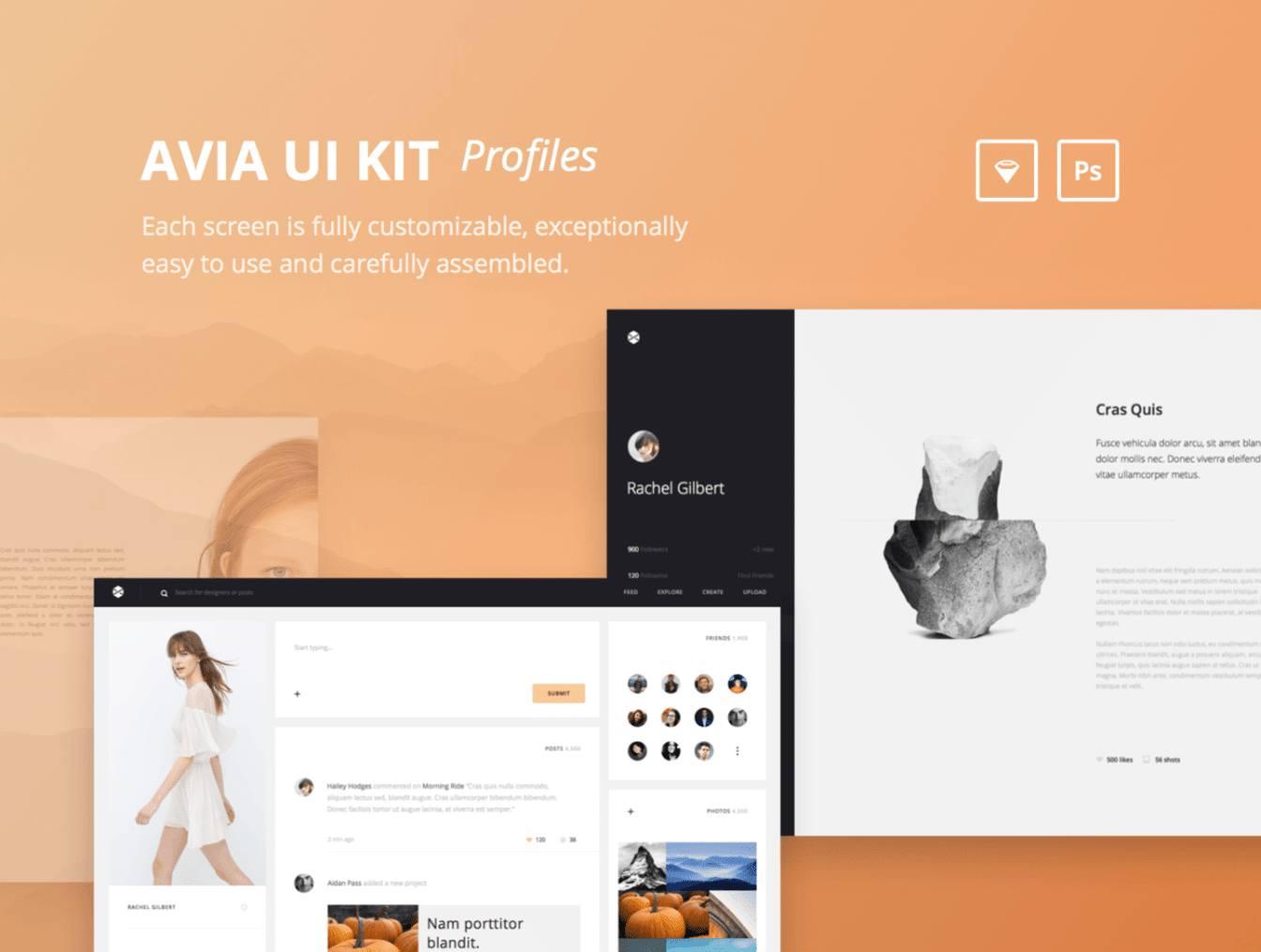 Avia UI Kit - 40 Sketch Template Profile Kit