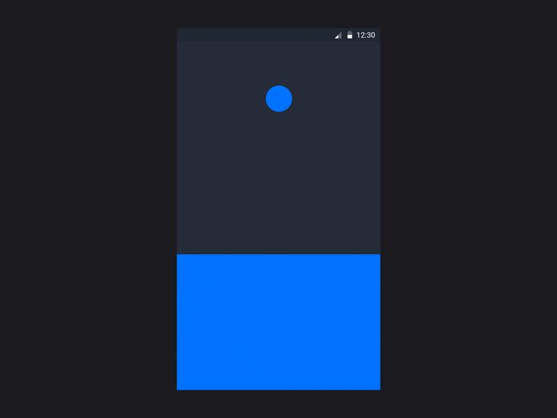 Behance Launch Screen