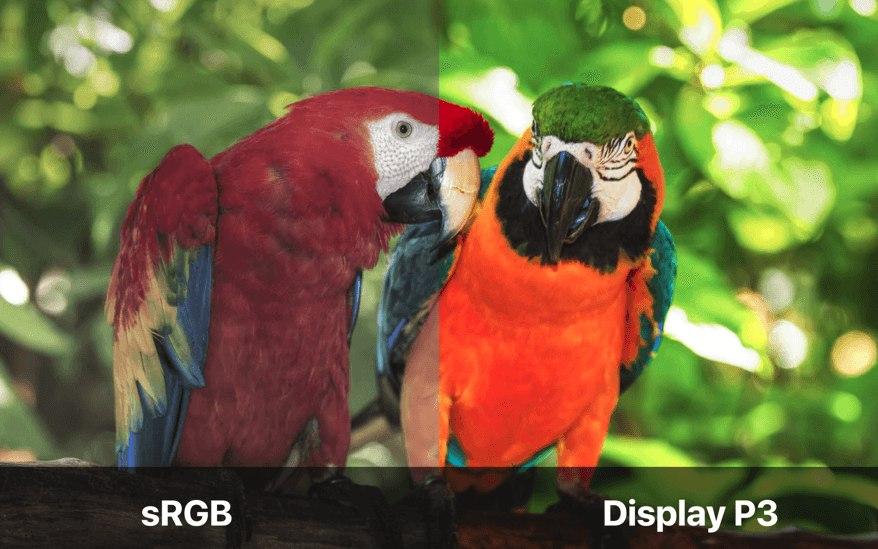 iPhone X screen type: sRGB vs Display P3 colors