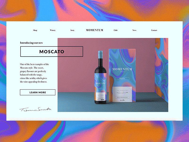 Web design inspiration - Momentum Landing Page.gif