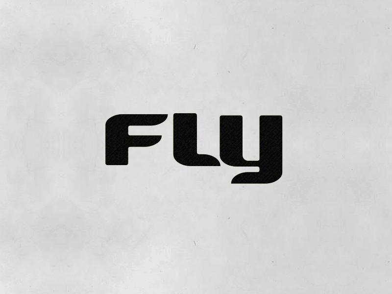 Fly Logotype Animation