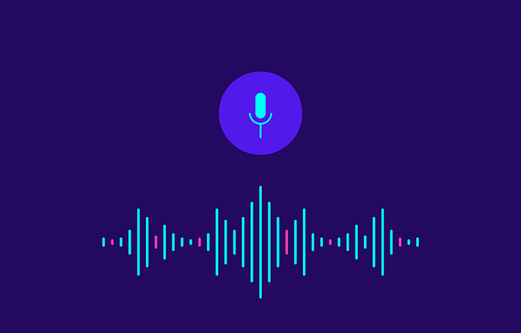 Voice User Interface